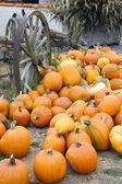 Farm Scene Old Wagon Vegetable Pile Autumn Pumpkins October — Stock Photo