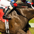 Stock Photo: One Horse Rider Jockey Come Across Race Line Photo Finish