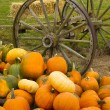 Farm Scene Old Wagon Vegetable Pile Autumn Pumpkins October — Stock Photo #35086129