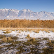Snow Covered Mountains Behind Lakeside Highway PLant Growth Utah — Stock Photo