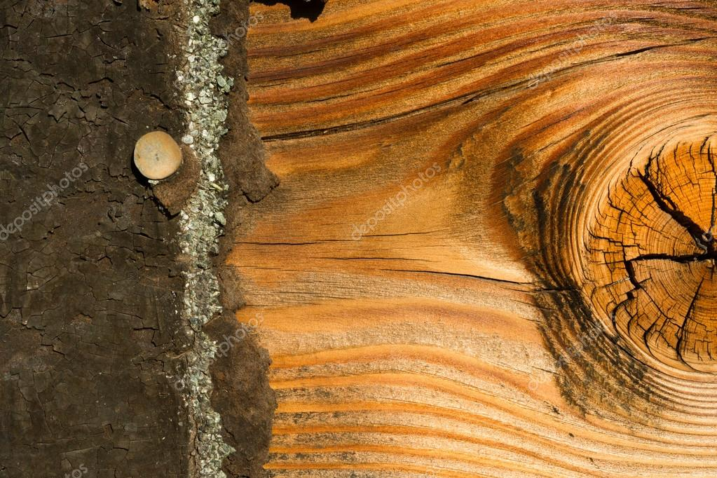 tablero de knotty pine resistido madera asfalto tejas para techos u foto de stock u