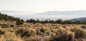 Looking Down Mountain Into Great Basin Nevada Desert Southwest — Stock Photo