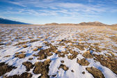 Winter Tundra Desert Landscape Great Basin Area Western USA — Stock Photo