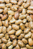 Pile of Dry Food Pinto Beans Healthy Ingredient — Stock Photo
