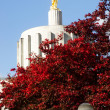 Постер, плакат: Salem Oregon Government State Capital Building Downtown