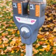 Stock Photo: Dual Parking Meter Needs Payment Coin Slot Autumn Downtown