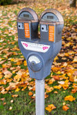 Dual Parking Meter Needs Payment Coin Slot Autumn Downtown — Stock Photo