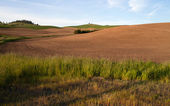 Farm Industry Plowed Field Spring Planting Palouse Country Ranch — Stock Photo