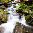 Waterfall onTrail Punch Bowl Falls Columbia River Gorge — Stock Photo