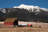 Red Barn Endures Mountain Winter Wallowa Whitman National Forest — Stock Photo