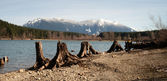 Man Dog Hiking Shore Rattlesnake Lake Mount Si Mountain — Stock Photo