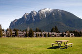 Greenbelt Picnic Table Subdivision Homes Mount Si North Bend — Stock Photo