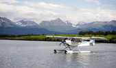 Single Prop Airplane Pontoon PLane Water Landing Alaska Last Frontier — Stock Photo