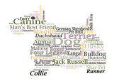 Dog breed Canine Word Cloud Typography Illustration Concepts Ideas — Foto Stock