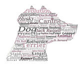 Dog breed Canine Word Cloud Typography Illustration Concepts Ideas — Stok fotoğraf