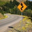 Road Sign Indicates Curves Ahead Mountain Landscape — Stock Photo #51079699