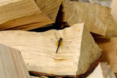 Dragonfly on the wood — Stock Photo