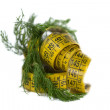 Centimeter and dill — Stock Photo