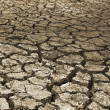 Stock Photo: Dry soil Arid