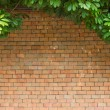 Brick wall with leaves — Stock Photo #32960405