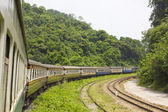 Railroad through the mountains and Forest — Stock Photo
