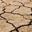 Cracked soil ground — Stock Photo #38241641