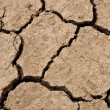 Cracked soil ground — Stock Photo