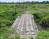 Bamboo bridge — Стоковое фото