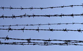 Barbed wire silhouette — Stock Photo