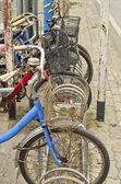 Alte fahrräder — Stockfoto