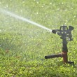 Sprinkler on green grass — Stock Photo