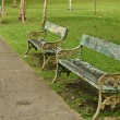 Stock Photo: Old benches