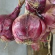 Stock Photo: Red onion