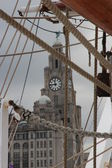 Liver Building — Stock Photo