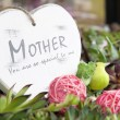 Mothers day heart with flowers — Stock Photo #13470811
