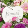 Mothers day heart with flowers — Stock Photo #13470847