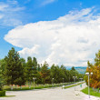 Panorama of beautiful nature in Georgia - park with green trees — Stock Photo #12784415