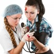 Female medical doctor or nurse giving checkup with stethoscope to young patient over white background — Stock Photo #14920979