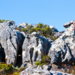 Large rocks on Table Mountain in Cape Town, South Africa — Stock Photo #14923779