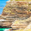 Cape of Good Hope, Cape Town, South Africa — Stok fotoğraf