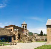 Panorama of old Orthodox cathedral in Mtskheta near Tbilisi - the most famous symbol of christianity, Georgia — Stock Photo