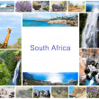 Stock Photo: African wild animals collage, fauna diversity in Kruger Park, natural themed collection background, beautiful nature of South Africa, wildlife adventure and travel
