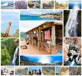 非洲野生动物拼贴画,动物区系多样性的克鲁格公园、 自然为主题集合背景、 南非、 野生动物的冒险和旅行的自然美景 — 图库照片