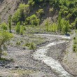 Nature of  green trees and river in Almaty, Kazakhstan,Asia - Stock Photo
