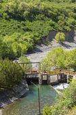 Natureza das árvores verdes e rio em almaty, cazaquistão, ásia — Fotografia Stock