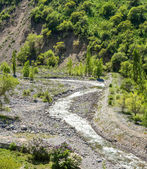 Nature of green trees and river in Almaty, Kazakhstan,Asia — Stock Photo