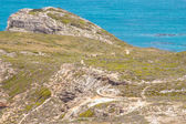 Cap de bonne-espérance. atlantique la péninsule du cap. cap. vue d'afrique du sud de la pointe du cap — Photo