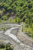 Aard van de groene bomen en rivier in almaty, kazakhstan, azië — Stockfoto
