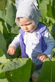 Adorable little baby girl in green grass at summer,Almaty, Kazakhstan — Stock Photo