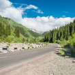 Road on  Big Almaty Lake, nature  green mountains and blue sky in Almaty, Kazakhstan,Asia at summer — Foto de Stock